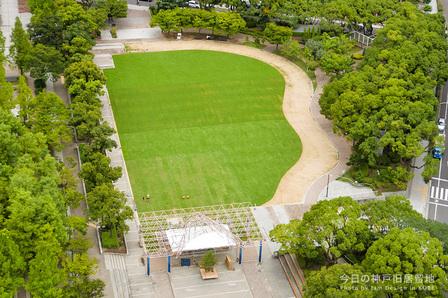 芝生全面オープン